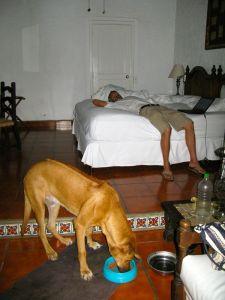 managua hotel room