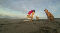 Surf Lifestyle in Northern Nicaragua