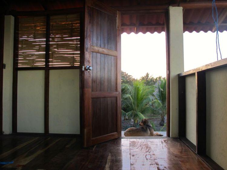 porch sitter