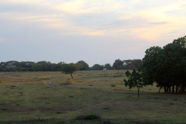 view lot 4